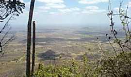 Pequizeiro - por DesorderBr (Panoramio)
