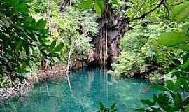 Pindorama do Tocantins - Pindorama do Tocantins-TO-Lagoa do Japonês-Foto:Gilvaney A. Castro