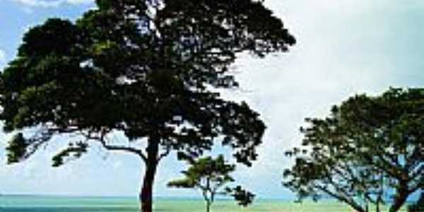 Santa Cruz Cabrália-BA-Contemplação-Foto:Mone de Castro