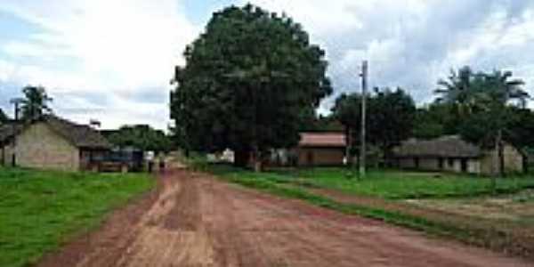 Rua do Povoado Mansinha em São Felix do Tocantins-TO-Foto:Rafael Nogueira Garc...