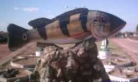 São Sebastião do Tocantins - peixe mascote, Por atenagores