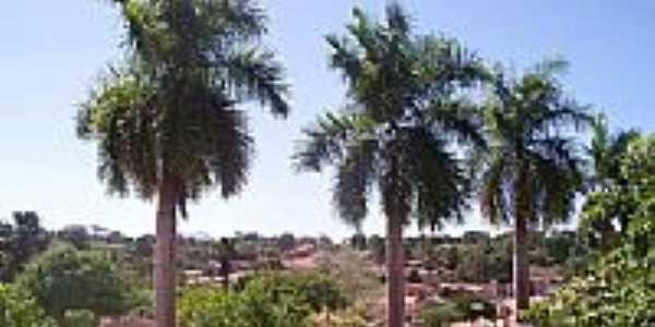 Vista da cidade-Foto:Nando Cunha - 1
