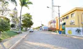 Pequi Minas Gerais fonte: www.ferias.tur.br