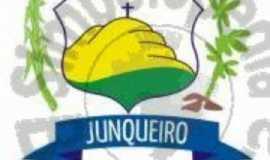 prefeitura municipal de junqueiro